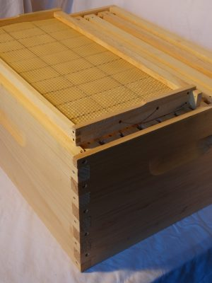 Assembled Boxes With Wax Foundation Frames – Mason County
